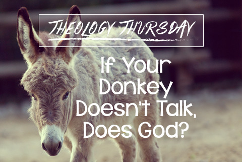 If Your Donkey Doesn't Talk, Does God?