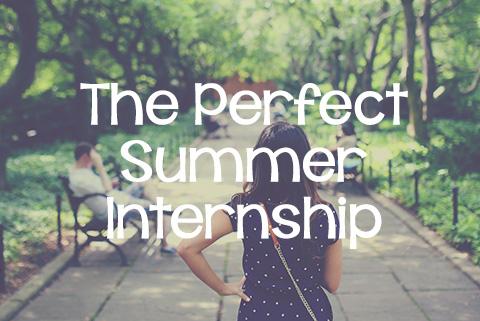 The Perfect Summer Internship