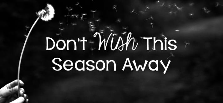 161013-wish-season