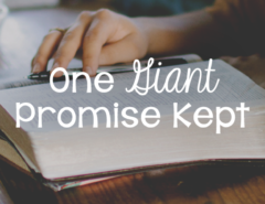 170111-giant-promise